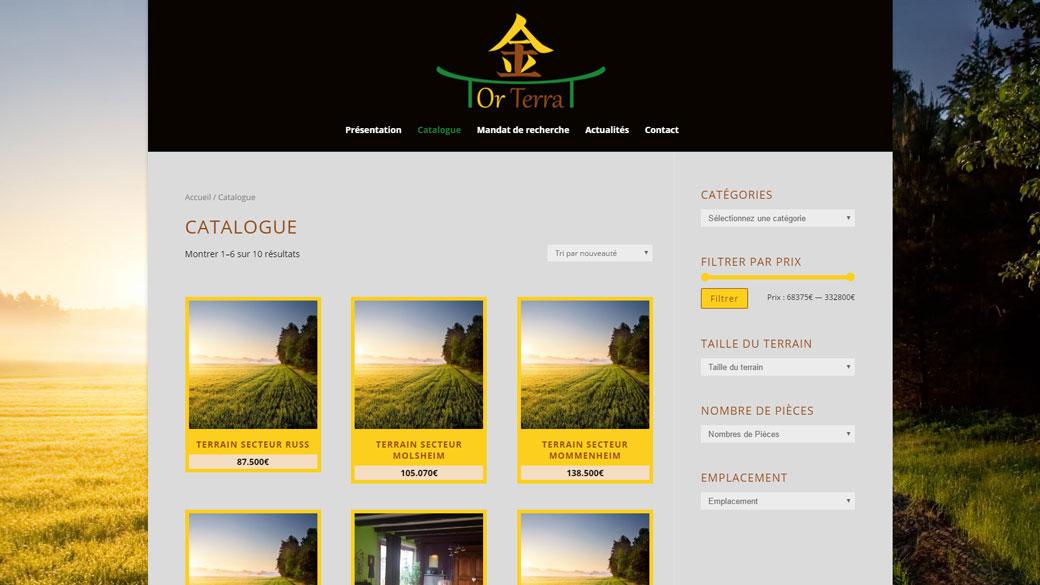 Site internet location maintenance or terra vitrine web